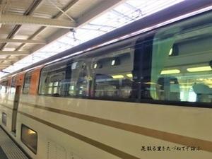 ビスタカー03.JPG
