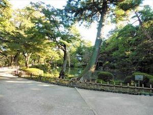 兼六園02.JPG