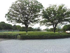 皇居東御苑03.JPG