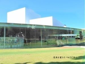 金沢21世紀美術館02.JPG